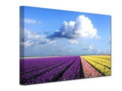 slike na platnu, stampa na platnu, fotografije na platnu, stampane slike na platnu